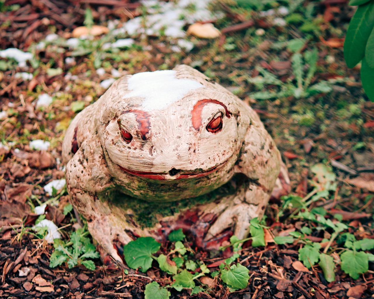 Frosch aus Bastelbeton